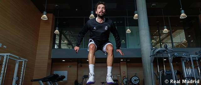 Llull makes his return