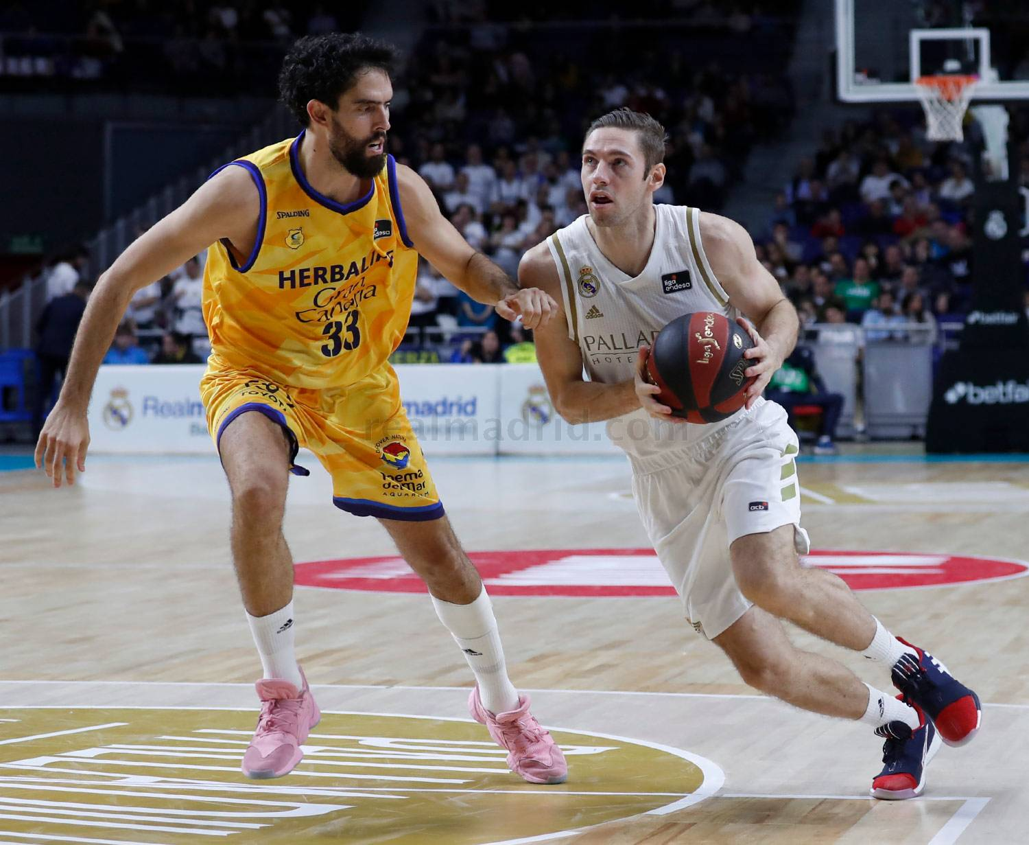Real Madrid - Real Madrid - Herbalife Gran Canaria - 24-11-2019